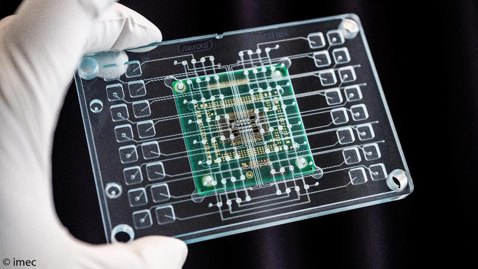 Organs-on-chips Market and Technology Landscape