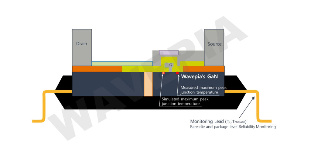 Cross-section view of WAVEPIA's Packaged GaN Transistor - Courtesy of Wavepia